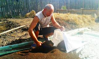 compost făcut de Traian Voinea