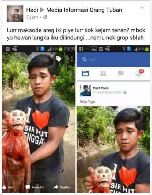 Aksi sadis upload foto menguliti monyet di facebook