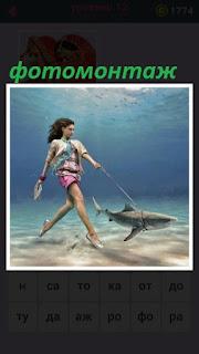 655 слов девушка под водой на поводке держит акулу 12 уровень