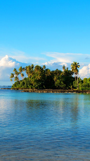 Island, palm trees, sea wallpaper