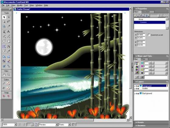 Adobe freehand mx great deals