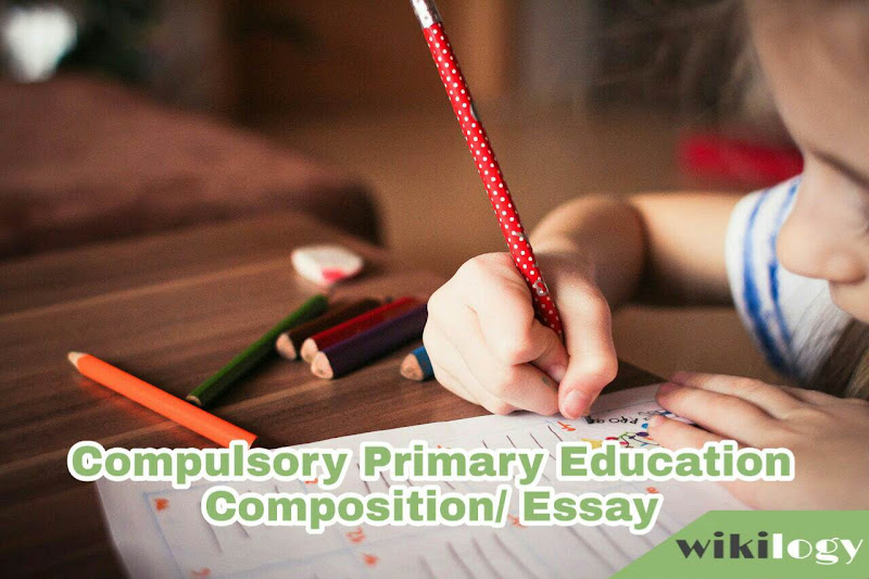 Compulsory Primary Education Essay and Composition