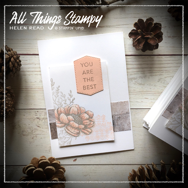 Stampin Up In Good Taste Suite Tasteful Touches Allthingsstampy