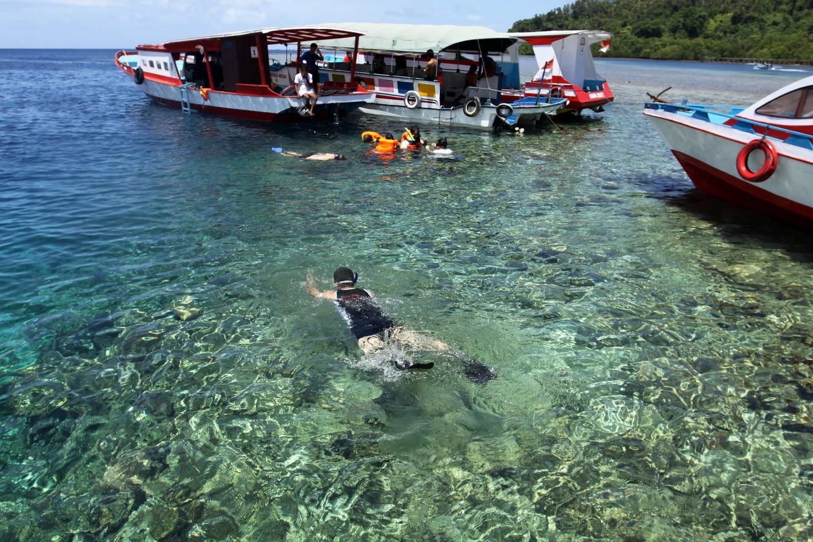 diving dan snorkling di bunaken