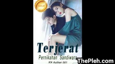 Novel Terjerat Pernikahan Sandiwara