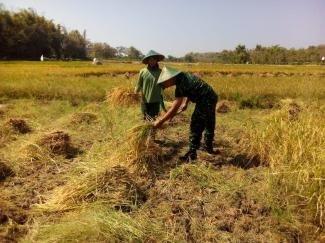 Petani Poktan Bonisari Keluhkan Pemanfaatan Bantuan Mesin Tani