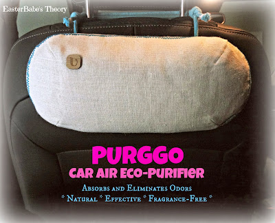 PURGGO Car Eco-Purifier Review - All-Natural Bamboo Charcoal Car Purifier which is fragrance-free and non-toxic