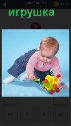 На полу ребенок в белых носка увлеченно играет с игрушкой утенок на красных колесах