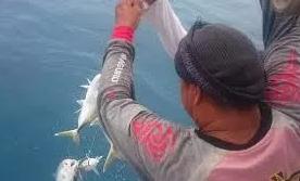 penangkapan ikan