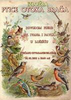 Izložba Ptice otoka Brača - Ložišća slike otok Brač Online