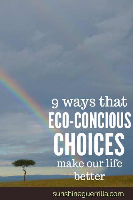 Nine Ways that Our Eco-Friendly Choices Have Made our Life Better
