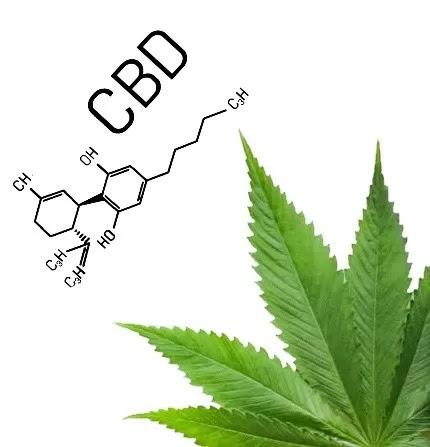 Κεραλοιφή Φαρμακευτικής Κάνναβης CBD 100mg