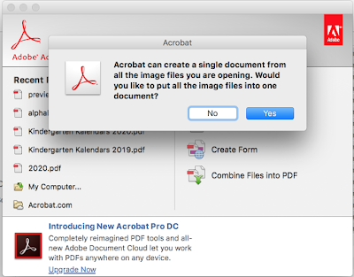 In Acrobat Pro, click on Yes for all the images to combine into one pdf.