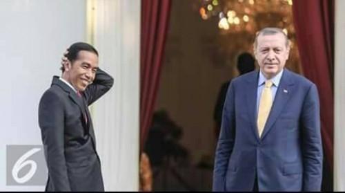 Didesak Bersikap Soal Gaza, Erdogan Telepon Jokowi