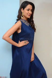 Pragya Jaiswal in beautiful Blue Gown Spicy Latest Pics February 2017 006.JPG