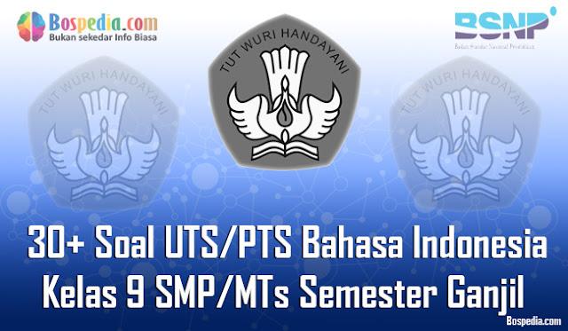 30+ Contoh Soal UTS/PTS Bahasa Indonesia Kelas 9 SMP/MTs Semester Ganjil Terbaru