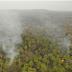 Satellite Pics, Brazil Data, NASA Data All Show 'Amazon Burning Down' Is 100% Fake News