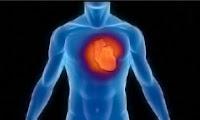 cardiovascular incidents