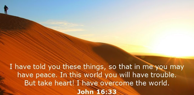 I have told you these things, so that in me you may have peace. In this world you will have trouble. But take heart! I have overcome the world.