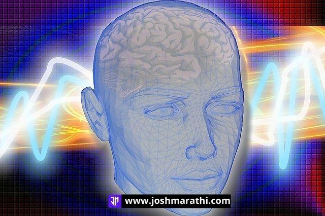 मेंदूविषयी ६० फॅक्टस (facts about brain in marathi)