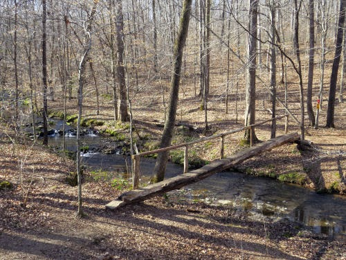 Lawson Creek