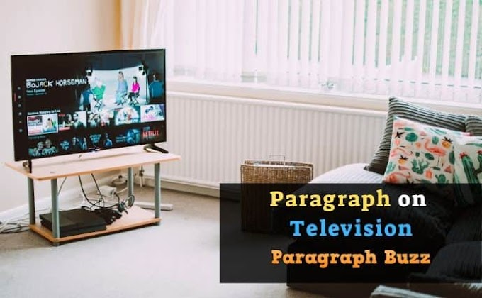 Write a Paragraph on Television for All