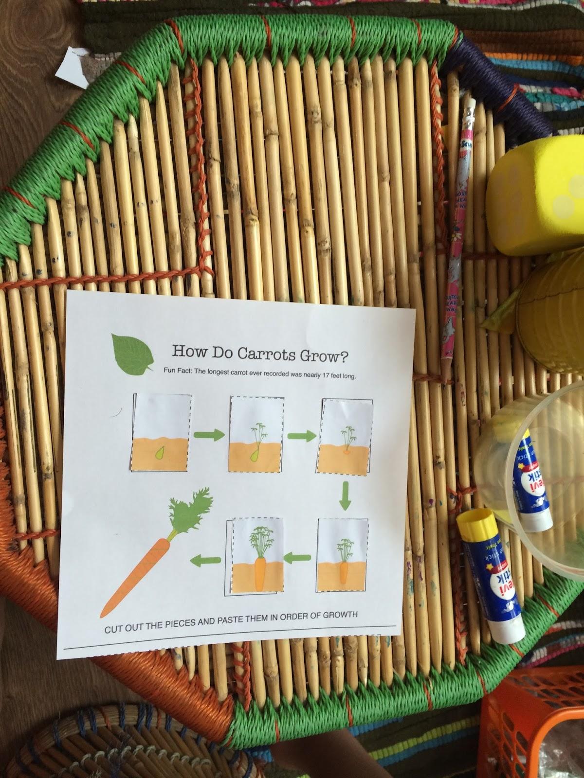 Spoonfuls Of Kindergarten The Carrot Seed
