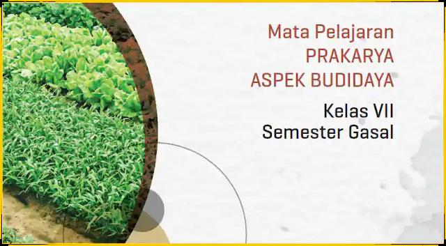 Modul PJJ Prakarya Aspek Budidaya SMP Kelas VII Semester Ganjil