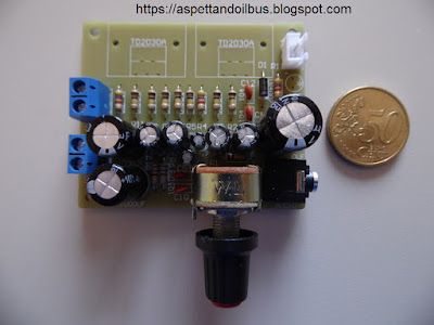 Fig. 9 - I condensatori elettrolitici montati - foto di Paolo Luongo