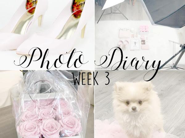 Photo Diary Week 3