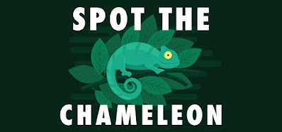 Can You Spot Chameleon Quiz Answers