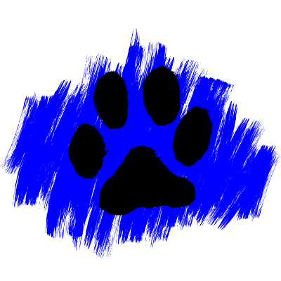 Cat Adoption