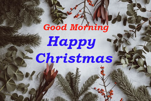 Good Morning Happy Christmas wishes