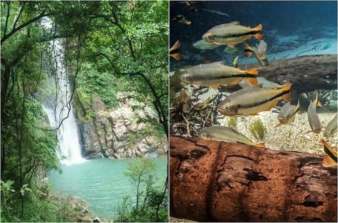 Prefeitura aprova protocolo de biossegurança para o turismo em Rosário Oeste