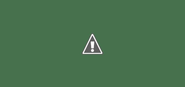 Cara Budidaya Ikan Sumatra