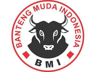 logo-bmi-banteng-muda-indonesia-pdip