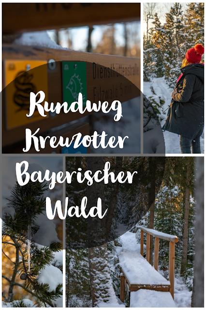 Rundweg Kreuzotter  Hochmoor Filzwald  Kloster Filz  Nationalpark Bayerischer Wald 30