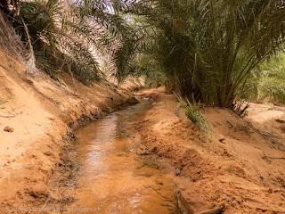 Canali di irrigazione nell'oasi di El Berbara