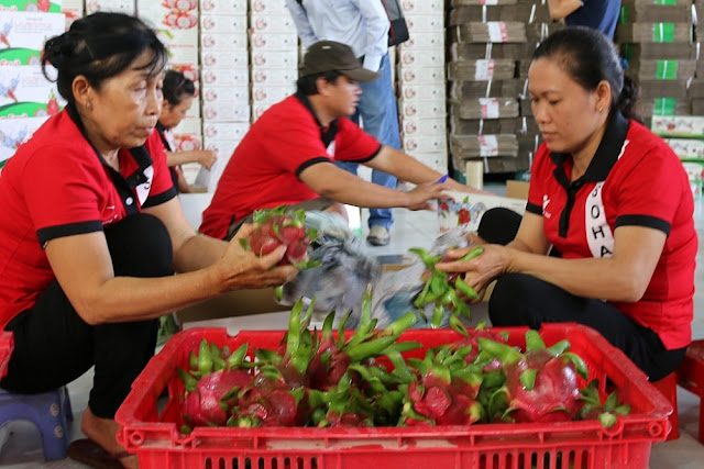 Giai phap thuc day xuat khau nong, thuy san Viet Nam