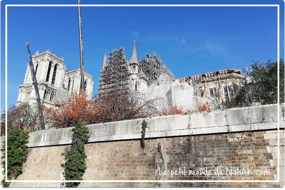 Notre-Dame de Paris reconstruction