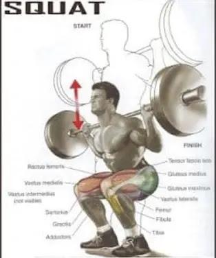 فوائد تمرين السكوات ( Squat )