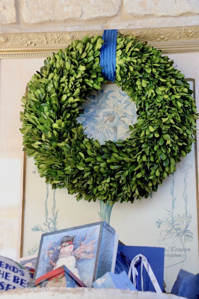 French country blue Christmas presents displayed with a preserved boxwood wreath that can be used for several Christmases