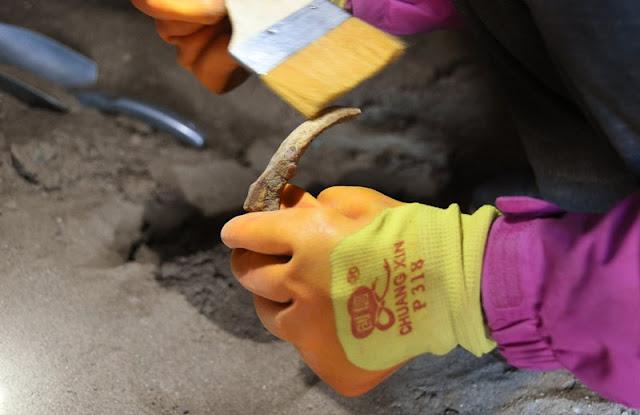Over 60 artefacts found in ancient Tibetan tombs