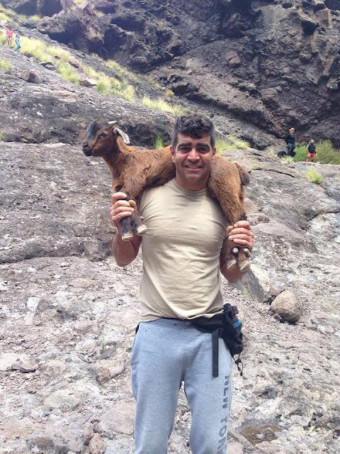 Un grupo de personas se jugaron la vida al subir a los monte de Gran Canaria para salvar algunas cabras que iban a matar