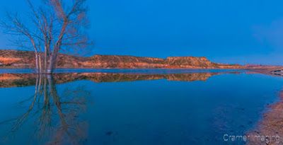Cramer Imaging's fine art landscape panorama photograph of a tree reflecting in the water of Wide Hollow Reservoir Escalante Utah at twilight