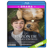 La Razon de Estar Contigo (2017) Full HD BRRip 1080p Audio Dual Latino/Ingles 5.1