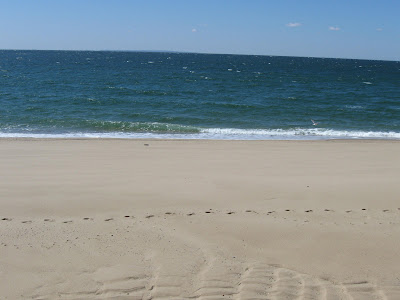 On Vacation - The Beaches of Cape Cod!