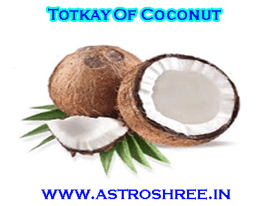 best astrologer for coconut totkay for success