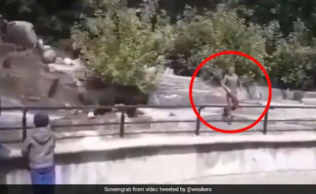 शराब के नशे में पानी के अंदर भालू से भिड़ गया यह शख्स, जबड़ा पकड़ा और फिर... देखें Viral Video