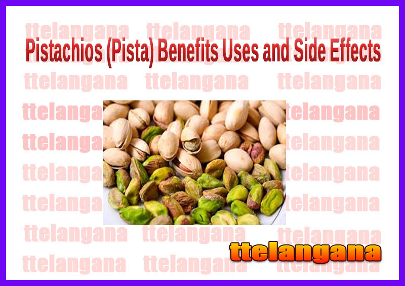 Pistachios (Pista) Benefits Uses and Side Effects